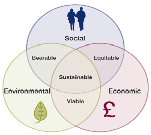 Sustainability Strategy1.png
